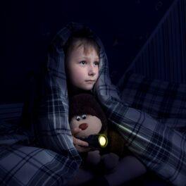 Băiat care se ascunde sub plapumă albastră, în întuneric. Are o lanternă și un animal de pluș